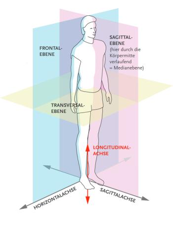 SPRINGER AKTIV AG - Orientierung am Körper